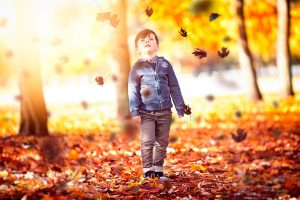 boy-watching-leaves-falling-from-trees